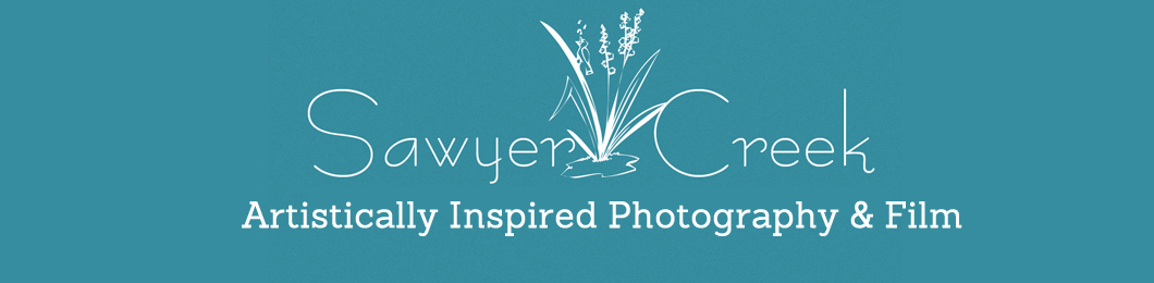 Sawyer Creek Photography logo